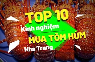 [TOP 10+] Kinh Nghiệm Mua Tôm Hùm Nha Trang Dành Cho Bạn!