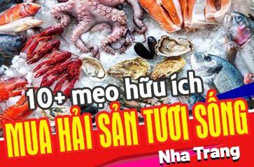 [TOP 10+ Kinh Nghiệm] Mua Hải Sản Tươi Sống Ở Nha Trang!