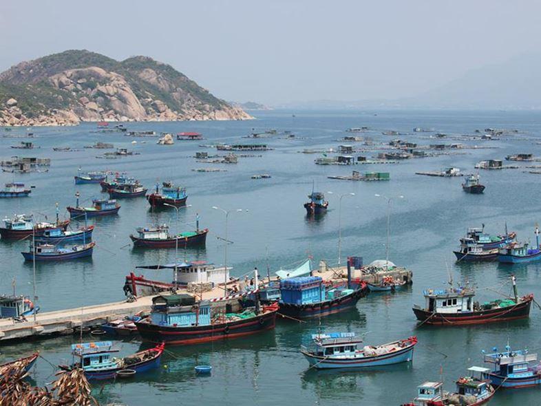 [TOP 10+ Lưu Ý] Cảng Ba Ngòi - Huyết Mạch Du Lịch Bình Ba!