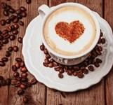 Cafe Sách Hòn Chồng