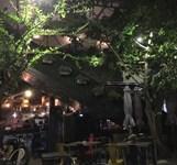 Palms Bistro Nha Trang
