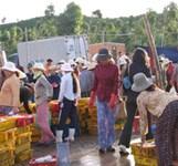 Chợ Rỗi Ninh Đa Ninh Hòa