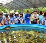 Viện Hải Dương Học Nha Trang Khánh Hòa