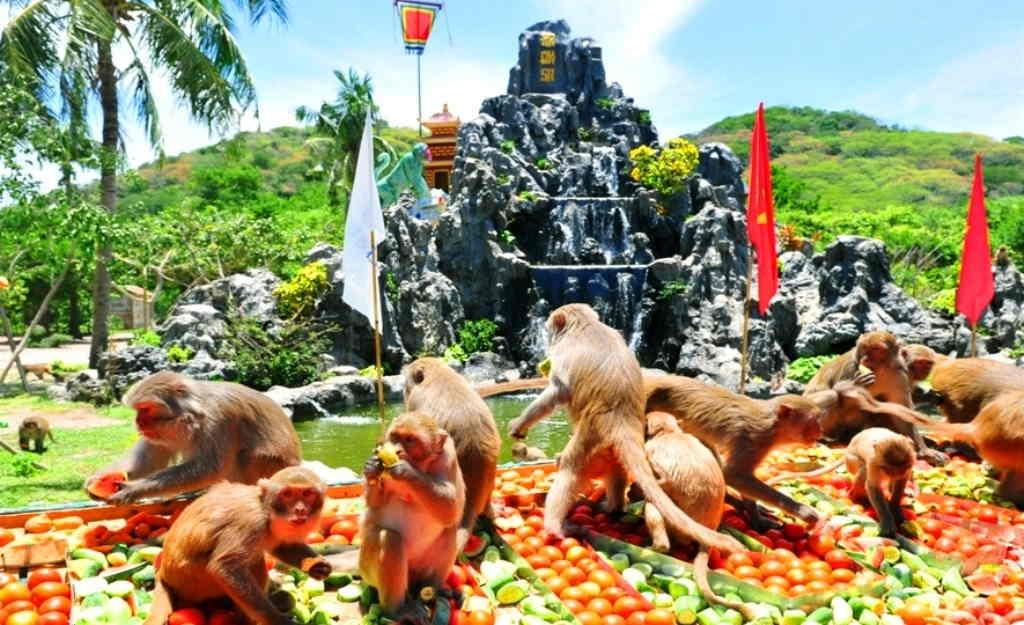 Đảo Khỉ Đầm Nha Phu