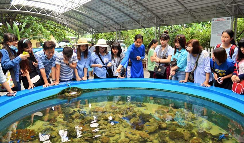 Hệ sinh thái rạn san hô viện hải dương học nha trang