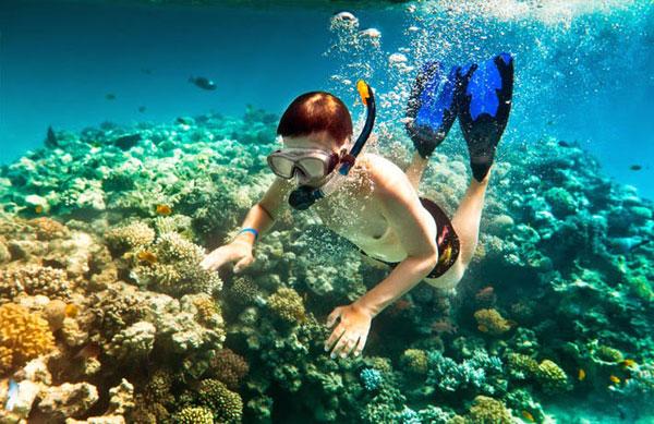 Lặn ngắm san hô đảo Bình Ba