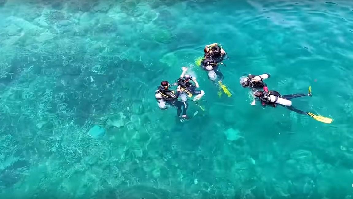 Lặn ngắm san hô đảo Hòn Mun