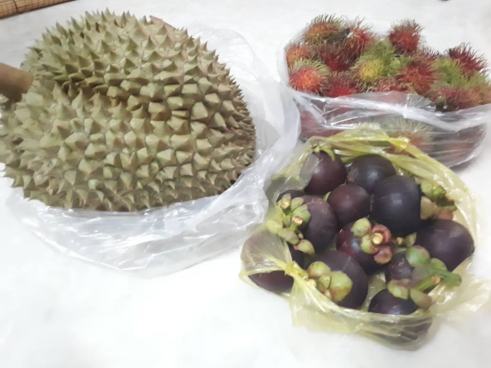 Mua trái cây làm quà du lịch