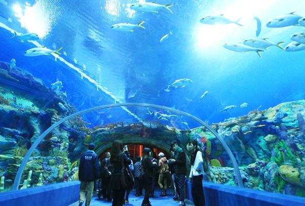7 địa điểm hấp dẫn ở Nha Trang