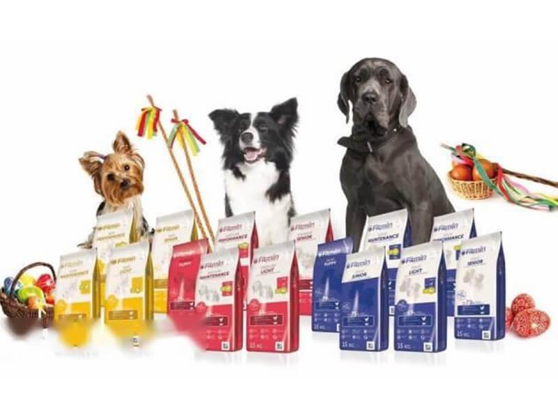 Phòng khám thú y Nha trang - KiKi Pet Shop