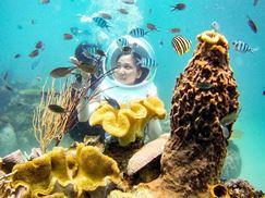 Tour Đi Bộ Dưới Đáy Biển Ở Nha Trang
