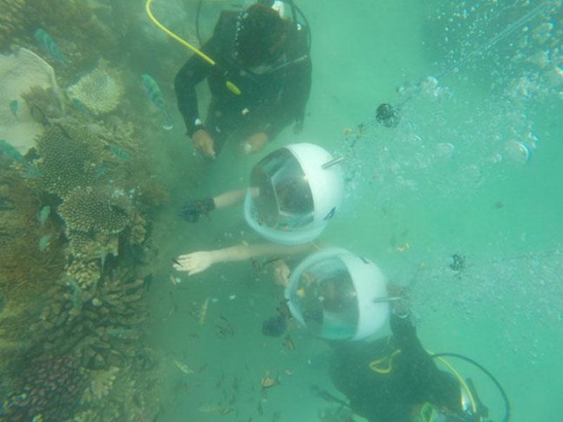 Những trải nghiệm khó quên dưới lòng đại dương