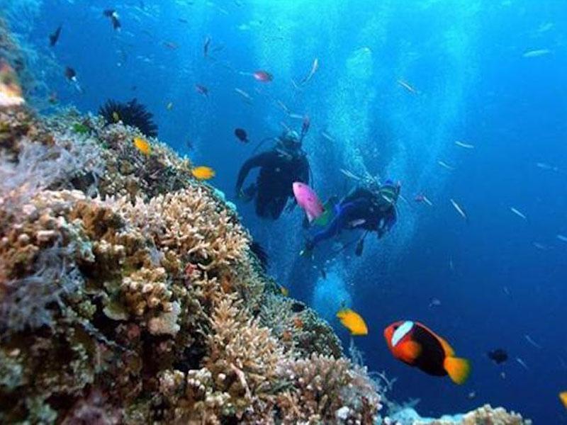 Thời gian lặn biển phù hợp