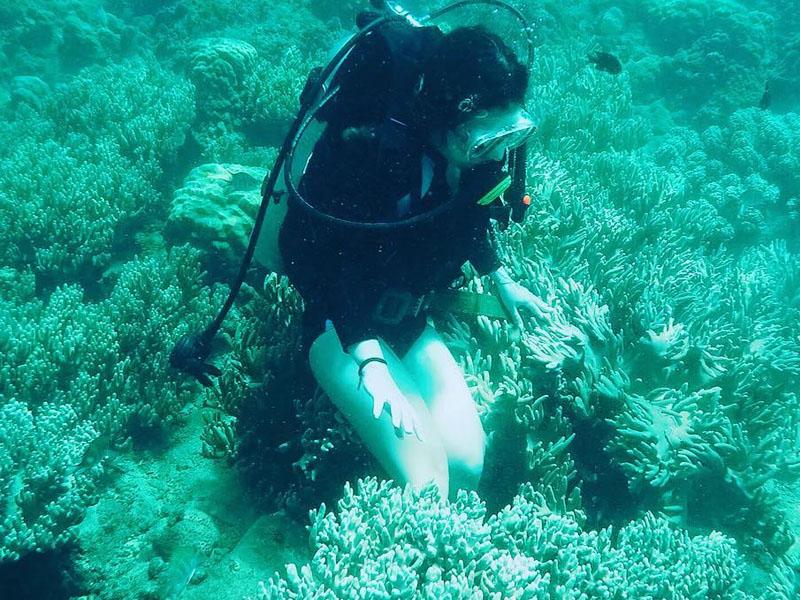 Khám phá thiên đường san hô biển