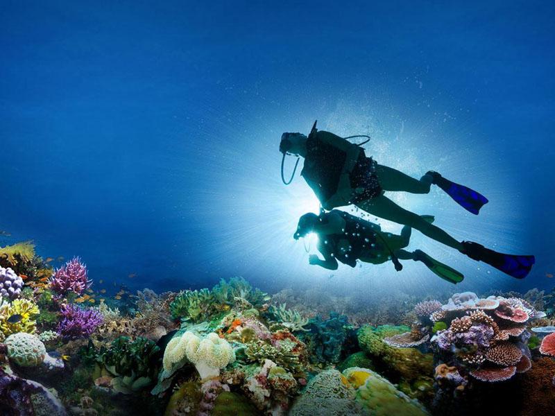 Lặn Biển Nha Trang