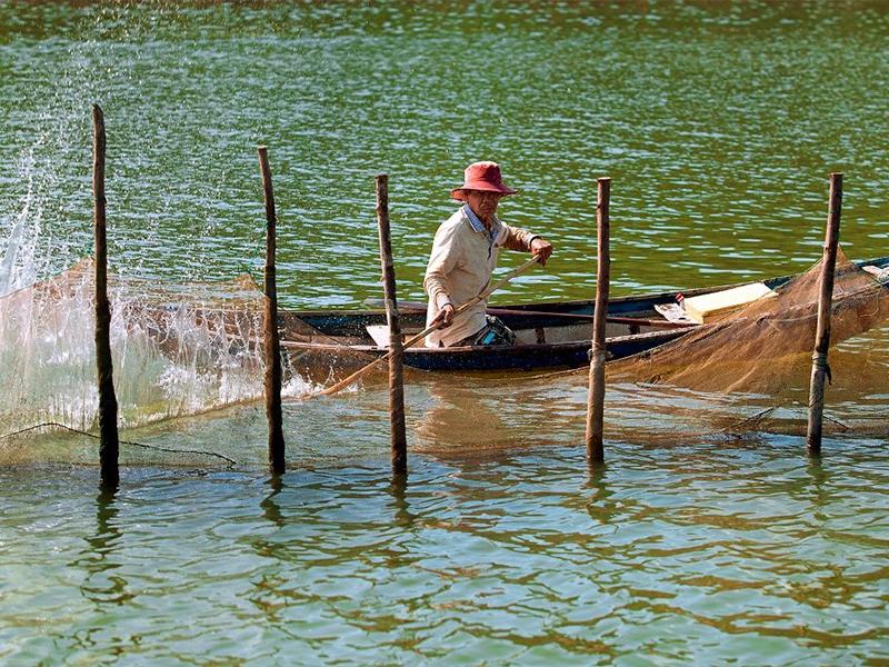 Cuộc sông người dân trên Vịnh Nha Phu