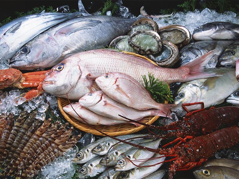Hải sản tươi sống Nha Trang