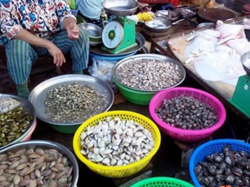 Mua hải sản chợ Bình Tân Nha Trang