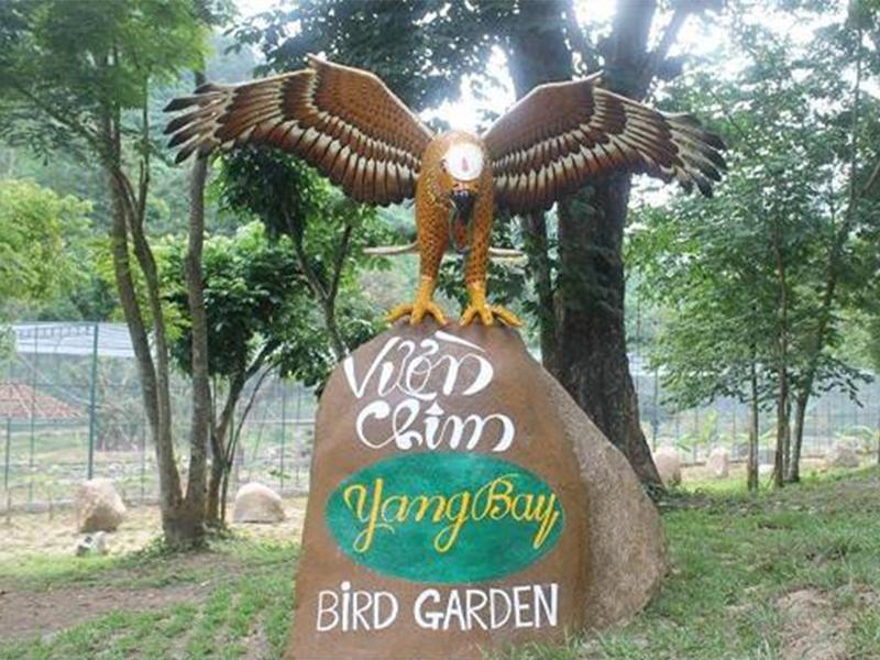 Vườn chim Thác Yang Bay