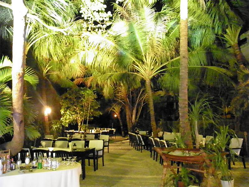 Hàng dừa tại Mini Beach