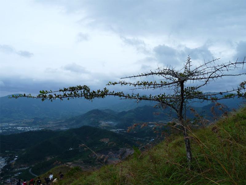 Đường đi lên núi Cô Tiên