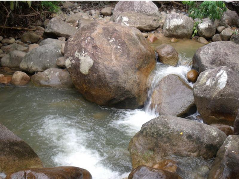 Dòng nước suối mát lạnh