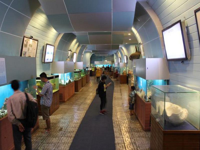 Khám phá Viện Hải Dương Học